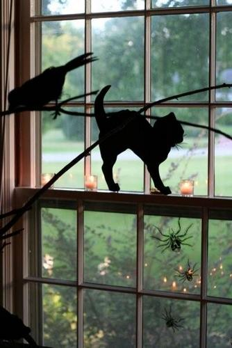 Halloween Decor black cat crows