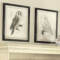 Owl Prints from Ballard Designs