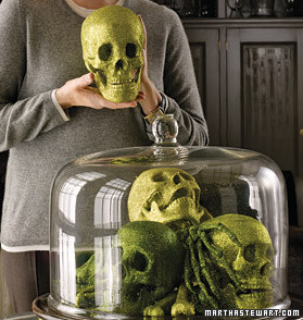 martha stewart's halloween skulls under glass