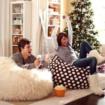 Furlicious Beanbag From Pottery Barn