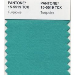 Color of the Year – Top Pick for 2010