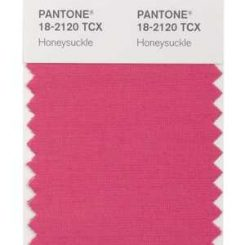 2011 Color of the Year . . .