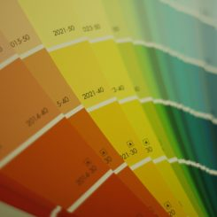 America's Favorite Paint Colors