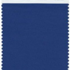 Pantone 2013 Top Color for Fashion – Monaco Blue