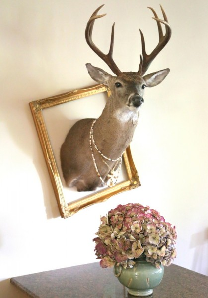 taxidermy deer decorating