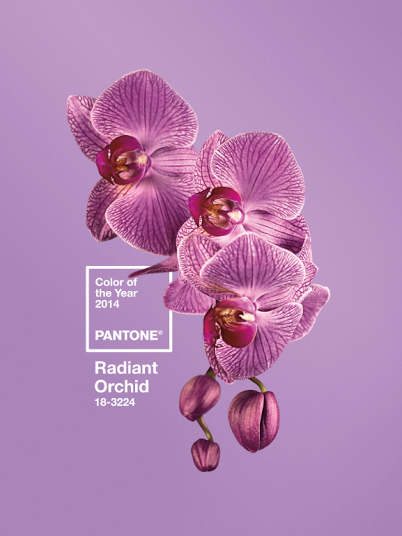 pantone radiant orchid 2014 color of the year