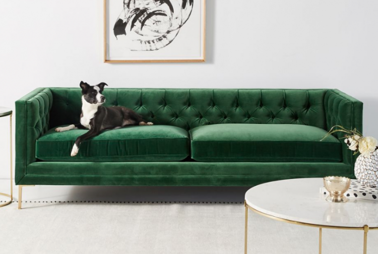 green colorful sofa