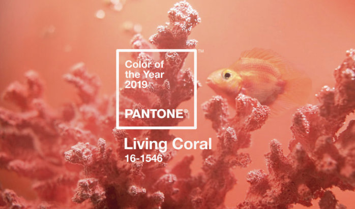 2019 Color of the Year for Pantone