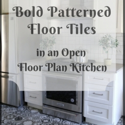 Bold Patterned Floor Tiles in an Open Floorplan Kitchen