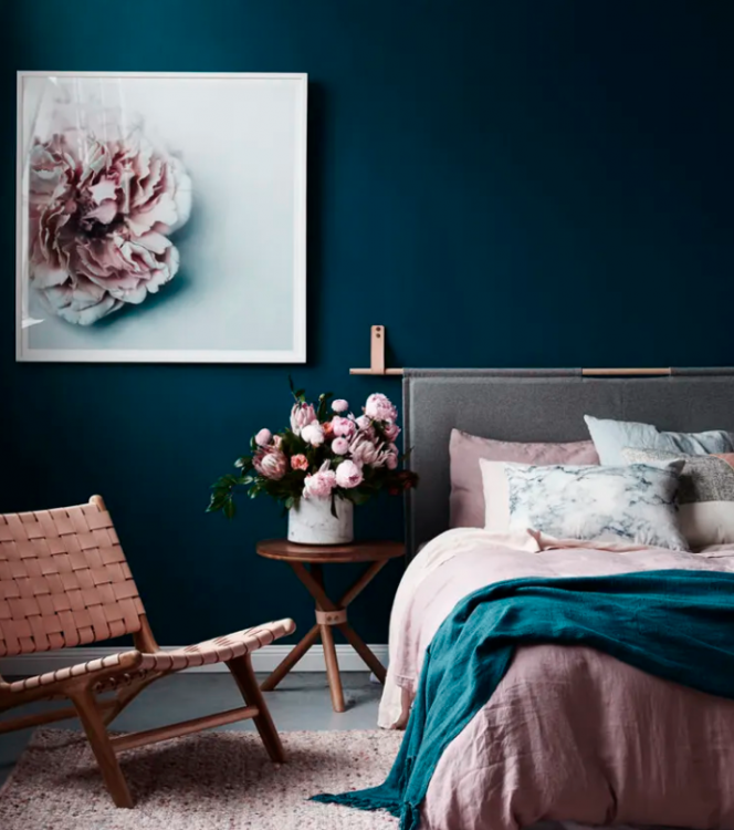 navy walls and blush pink color scheme